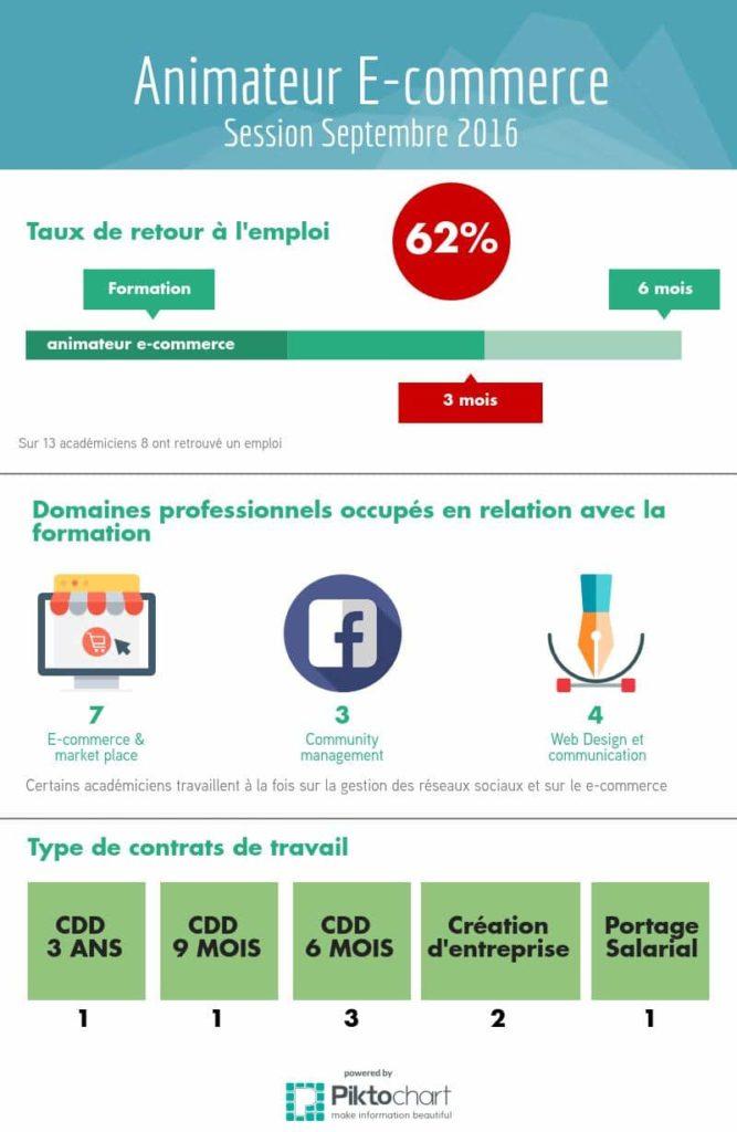 infographie_animateur_e-commerce_2016